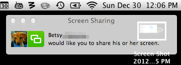 The person you're sharing your screen with will receive an invitation to view your screen