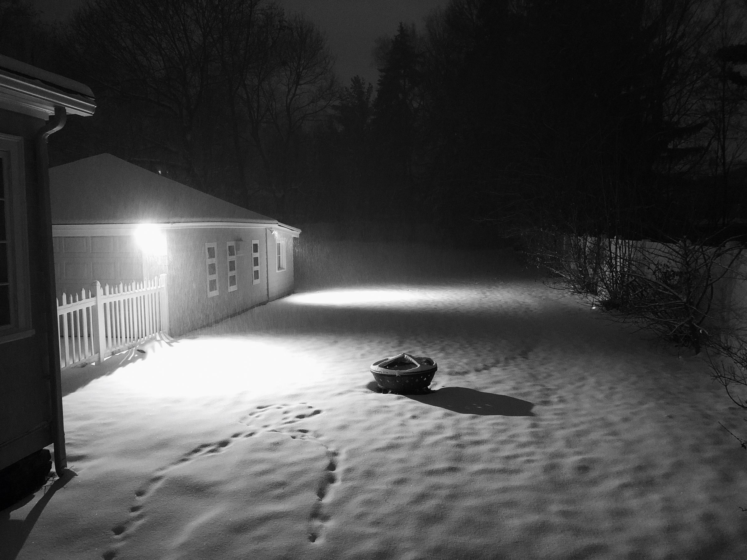 Empty scene of snow at night